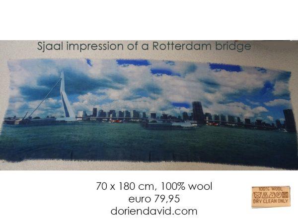 Sjaal impressions of Rotterdam 72